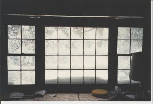 The Blizzard of '96 From Our Window