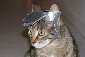Duct tape cat's hat