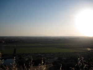 "Paceco's countryside - Glorious, the ""sun before setting on the Mediterranean"""