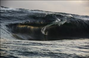 """""""Killer wave"""""""
